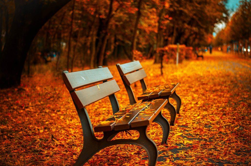 Es wird Herbst …